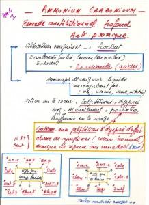 Ammonium Carb 1