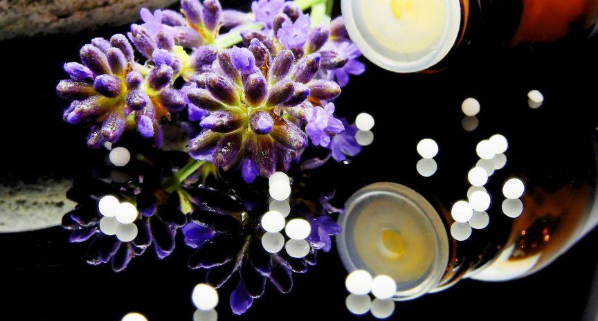 Planeta Homeopatía • Homeopatía: remedios breves